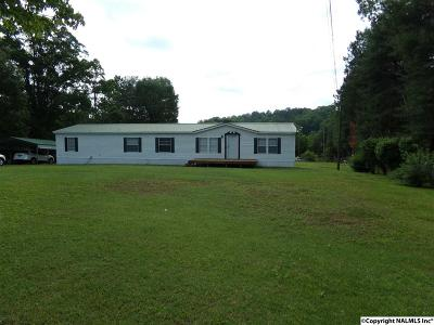 Fort Payne Mobile Home For Sale: 92 County Road 566