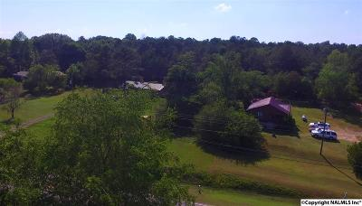 Fort Payne Single Family Home For Sale: 2330a Dogtown Road