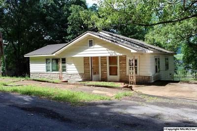 Guntersville Single Family Home For Sale: Alabama Highway 205