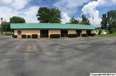 Fort Payne AL Commercial For Sale: $85,000