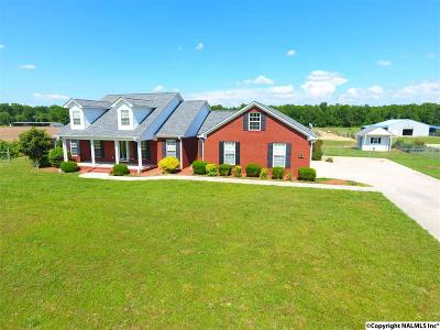 Hazel Green Single Family Home For Sale: 2041 Scott Road