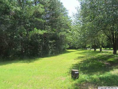 Residential Lots & Land For Sale: Palmer Road
