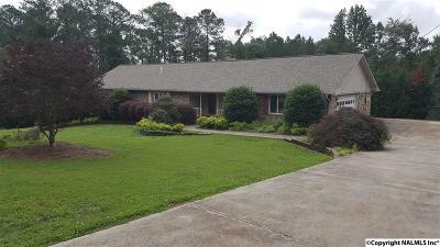 Guntersville Single Family Home For Sale: 5005 Neely Avenue
