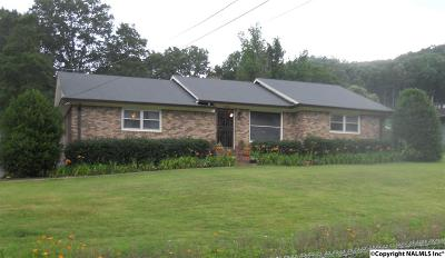 Guntersville Single Family Home For Sale: 3406 Colonial Drive