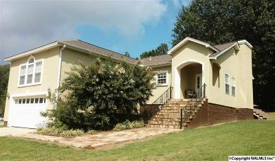 Guntersville Single Family Home For Sale: 3005 Waterfront Street
