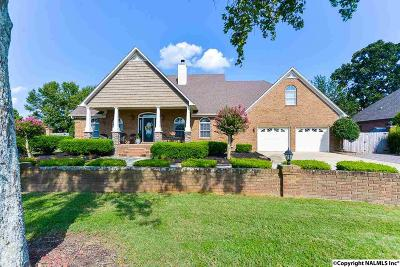 Single Family Home For Sale: 22284 Mooresville Road