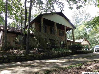 Guntersville Single Family Home For Sale: 2065 Snow Point Road