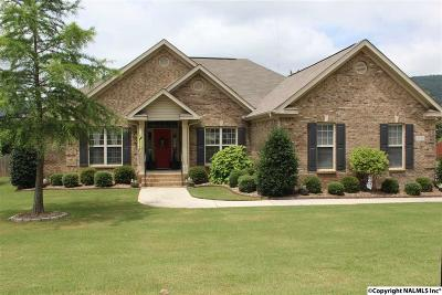Owens Cross Roads Single Family Home For Sale: 7102 SE Pale Dawn Place