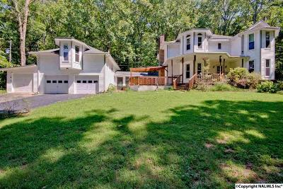 Decatur Single Family Home For Sale: 137 Baldwin Road