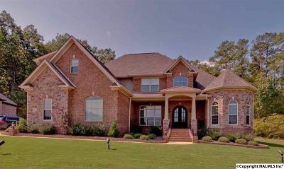 Single Family Home For Sale: 8002 Goose Ridge Drive