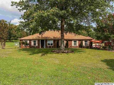 New Market Single Family Home For Sale: 973 Hurricane Road