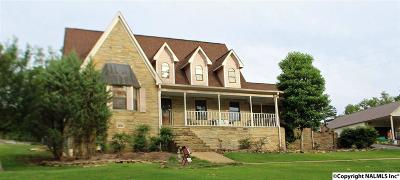 Leesburg Single Family Home For Sale: 4400 Valley Street