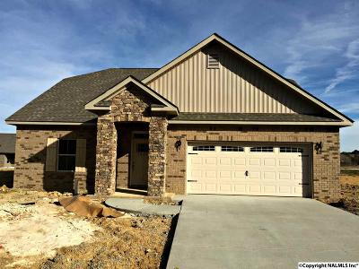 Owens Cross Roads Single Family Home For Sale: 7481 Chaco Street