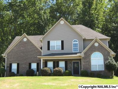 Priceville Single Family Home For Sale: 129 Amber Way