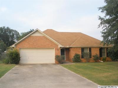 Decatur Single Family Home For Sale: 1704 Lake Point Drive