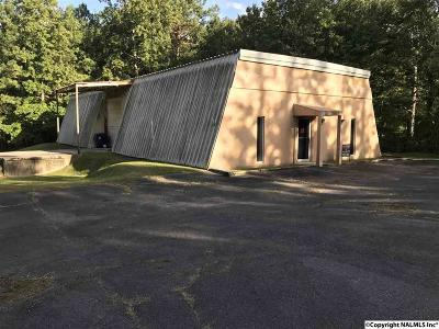 Arab Commercial For Sale: 435 5th Street