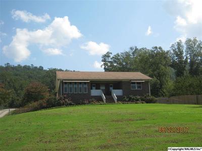 Guntersville Single Family Home For Sale: 12946 Alabama Highway 227
