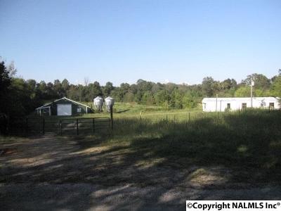 Morgan County Farm For Sale: 919 Mardis Point Road