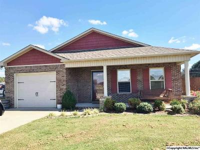 Single Family Home For Sale: 19198 Racheals Loop