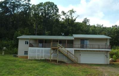 Valley Head Single Family Home For Sale: 690 County Road 738