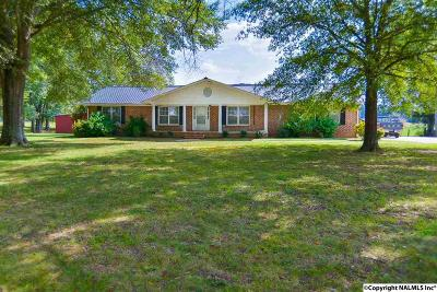 Decatur Single Family Home For Sale: 3560 Modaus Rd SW