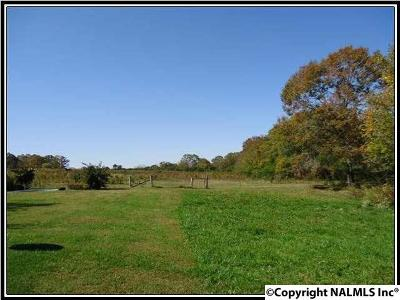 Guntersville Residential Lots & Land For Sale: 2451 Solitude Road