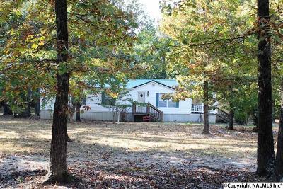 Cedar Bluff AL Mobile Home For Sale: $162,500
