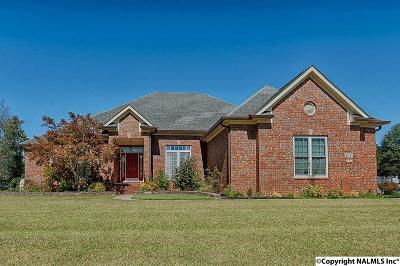 Single Family Home For Sale: 108 Josh Lee Drive