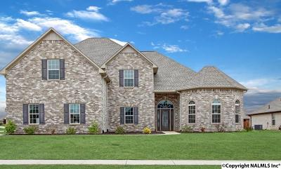Athens, Ekmont Single Family Home For Sale: 13260 Chapel Hill Lane