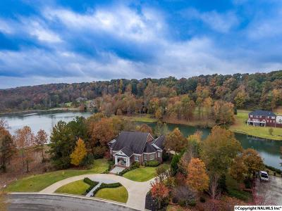 Decatur Single Family Home For Sale: 1627 Lake Cove Drive