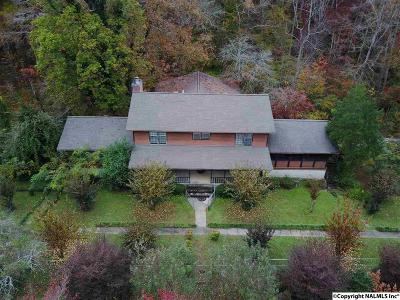 Gadsden Single Family Home For Sale: 2736 Tabor Road