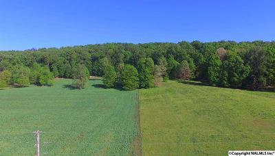 Valley Head Residential Lots & Land For Sale: 2240 County Road 608