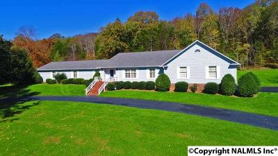 Single Family Home For Sale: 745 Dug Hill Road