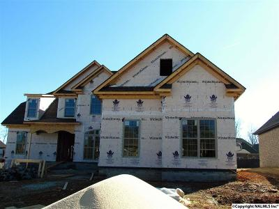Athens, Ekmont Single Family Home For Sale: 22926 Bluffview Drive