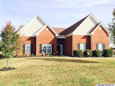 Single Family Home For Sale: 117 Genesis Drive
