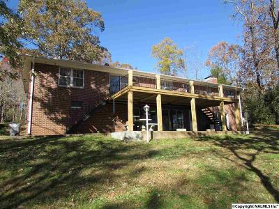 Rogersville AL Single Family Home For Sale: $399,500