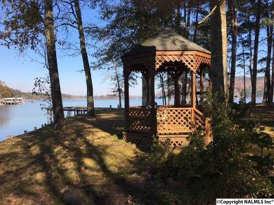 Cedar Bluff, Mentone, Fort Payne, Gaylesville, Valley Head, Menlo, Cloudland Single Family Home For Sale: 400 County Road 728