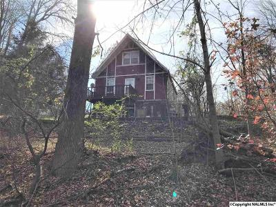 Athens Single Family Home For Sale: 18523 Blue Springs Road