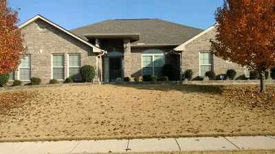 Single Family Home For Sale: 163 Robin Song Lane