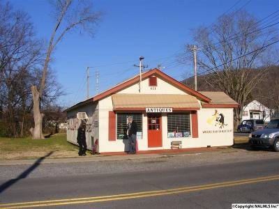 Cherokee County, Dekalb County, Jackson County, Marshall County Commercial For Sale: 405 1st Street