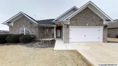 Single Family Home For Sale: 383 Mitchell Moore Road