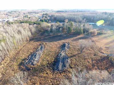 Hazel Green Residential Lots & Land For Sale: Hwy 231-431 N