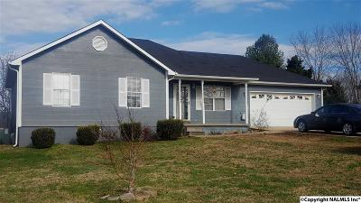 Single Family Home For Sale: 227 Boles Road