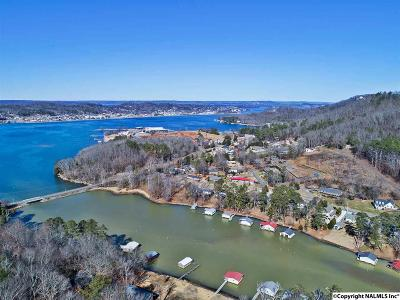 Guntersville AL Single Family Home For Sale: $184,500