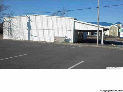 Commercial For Sale: 106 Airport Road