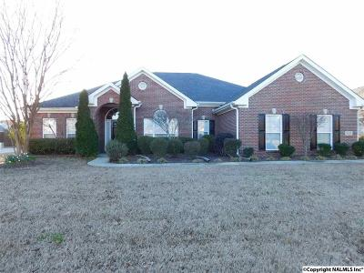 Madison County Rental For Rent: 3108 Mossy Rock Road