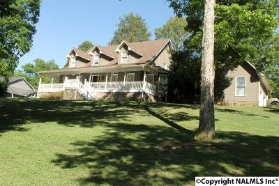 Fort Payne Single Family Home For Sale: 5303 Big Wills Road