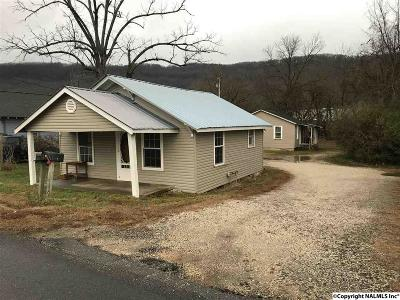 Flat Rock, Fort Payne, Henagar, Ider, Mentone, Pisgah, Rainsville, Sylvania, Valley Head Single Family Home For Sale: 217 And 217a Godfrey Avenue