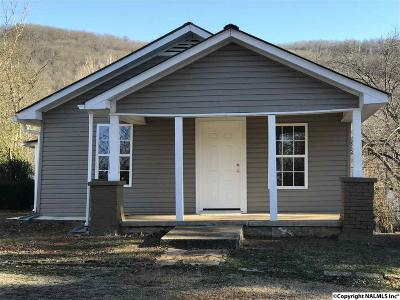 Fort Payne Single Family Home For Sale: 653 Sanders Avenue