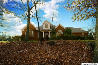 Decatur Single Family Home For Sale: 3925 S Chapel Hill Road